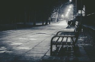 nightbench