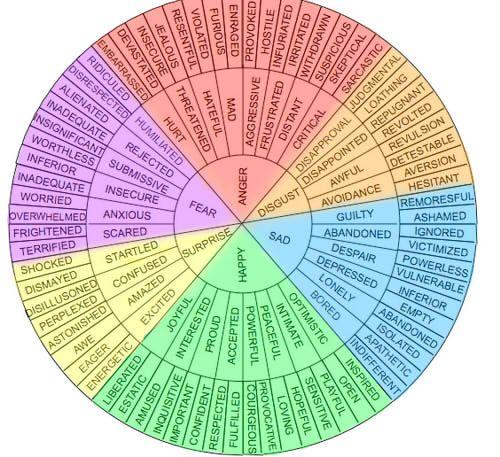 Emotions wheel 2