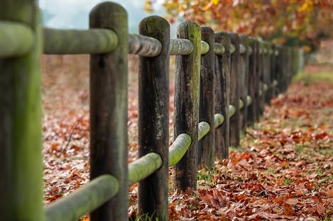 fence-posts-2331414_1920