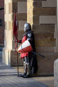 guard.jpeg
